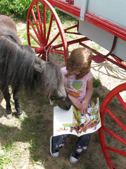 read to a horse